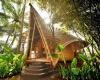 В Индонезии пройдет Международный фестиваль архитектуры из бамбука