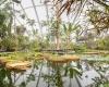 Новая оранжерея в Орхусском Ботаническом саду в Дании