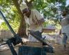 Новые строительные технологии для африканского острова Пемба