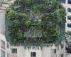 Китаец пытался за высокими деревьями спрятать построенные два этажа