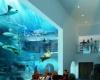 Реконструкция «Аквариума двух океанов» в Кейптауне