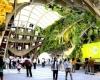 Французский павильон для Milan Expo 2015