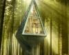 Лесной дом на двоих