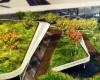 Новый эко-парк в Турции