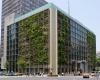 Токио: вертикальные тепличные хозяйства прямо в офисах!