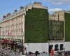Стена здания отеля превращена в ковер из растений
