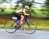 В проекте находятся новые велосипедные дорожки